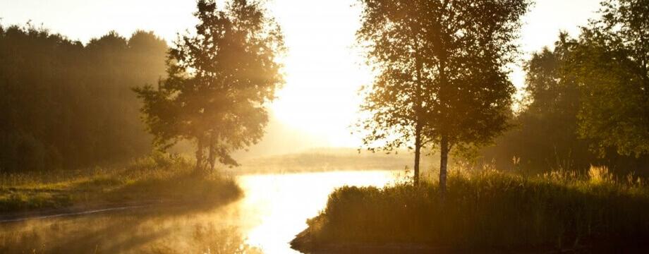 <p>Voor een uitvaart in Steenwijkerland zoals u die wenst</p>