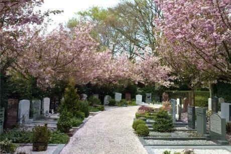 Begraafplaats Zorgvlied Amsterdam